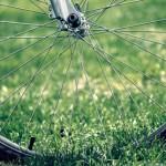 Bike wheel in grass